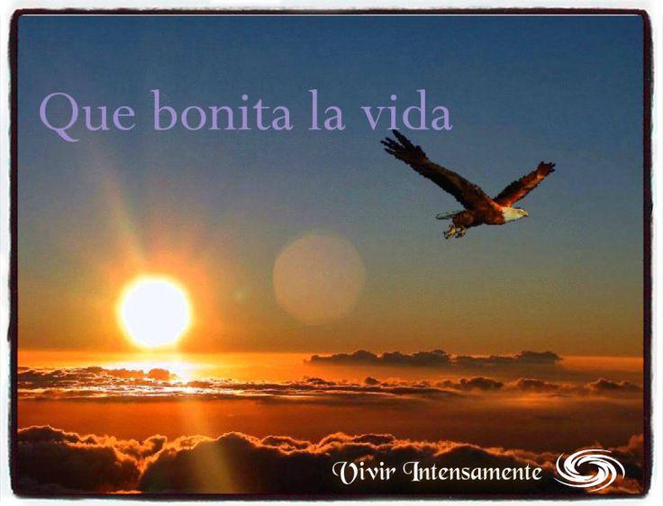 Hermosa es la vida!