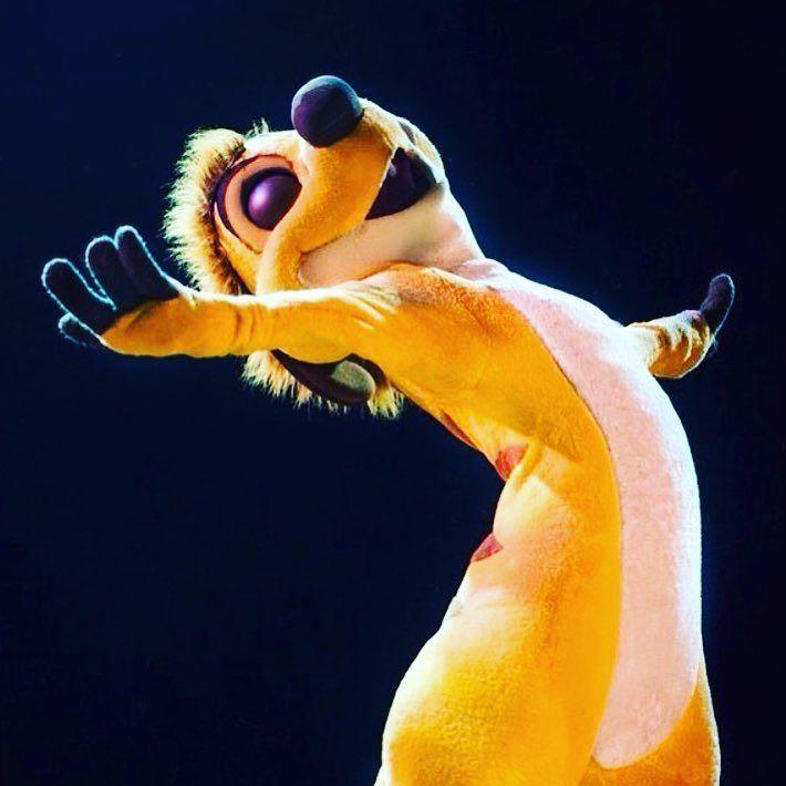 The Lion King #timon #hakunamatata #lionkingmusical
