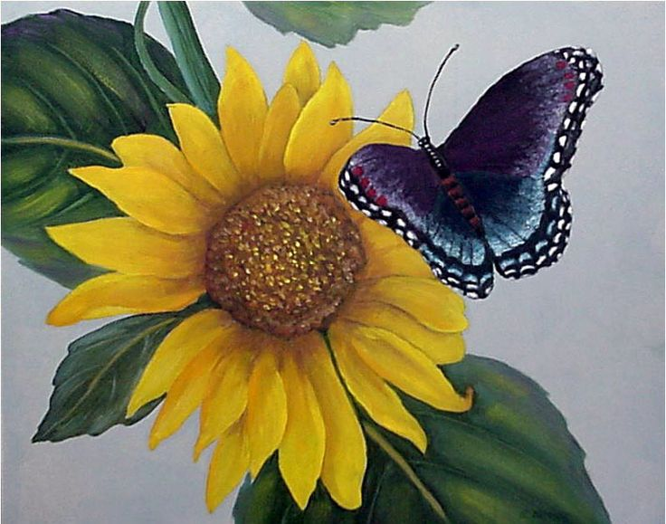 17 Best Butterflies And Flowers Images On Pinterest