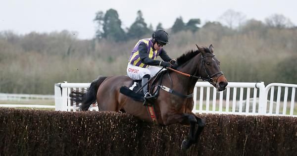 The 2015 Cheltenham Gold Cup winner Coneygree has been allotted top-weight of 11st 12lb for the £200,000 Grade Three Hennessy Gold Cup (58 entries) at Newbury on the second and final day of the bet365 Festival, Saturday, November 26. Stag...