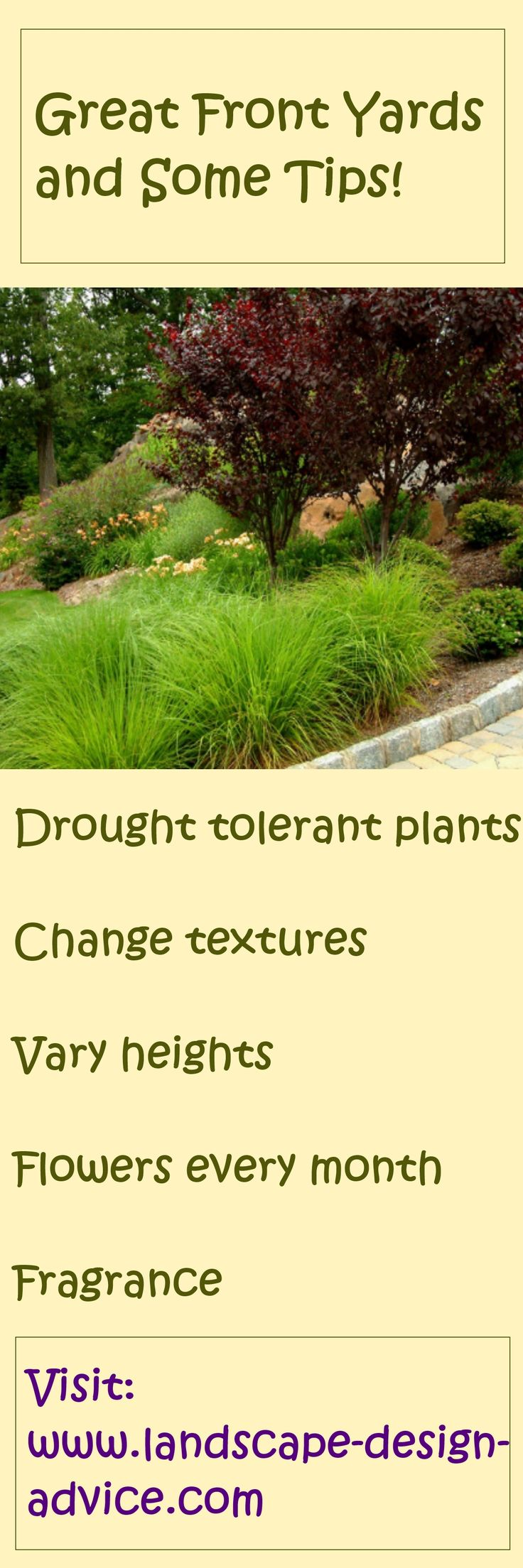 Some tips on creating beautiful and colorful front yard designs. http://www.landscape-design-advice.com/front-yard-landscaping-ideas.html