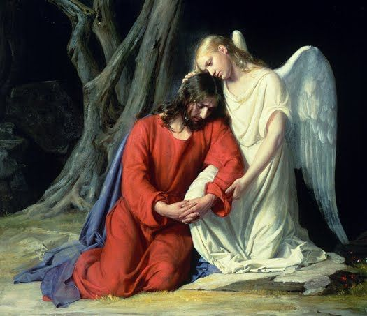 12 best jesus at the garden of gethsemane images on pinterest jesus christ religious pictures Jesus praying in the garden of gethsemane