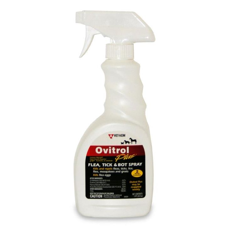 Ovitrol Plus Flea, Tick And Bot Spray 16 OZ | Buy Ovitrol Plus