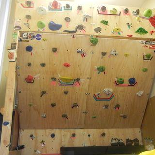 243 best home climbing walls images on Pinterest | Climbing wall ...