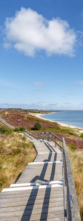 Holzweg durch die Heide in Braderup auf der Insel Sylt – Nordsee.
