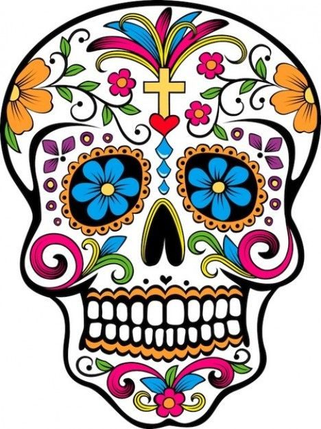 Sugar Skull Vector - free image from http://www.freepik.com/