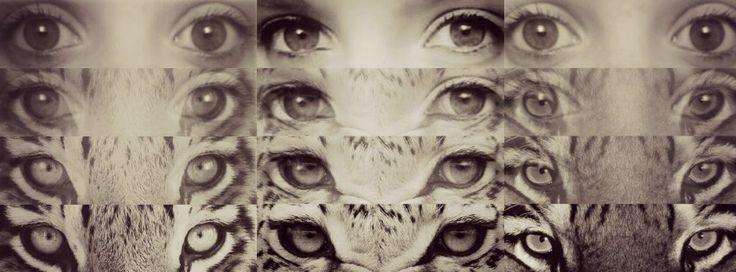 Insta eyes app edit