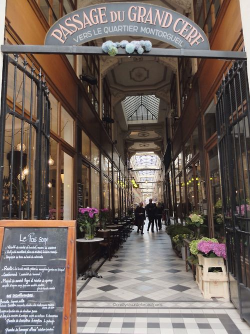 Passage du Grand Cerf 75002 PARIS #paris #passagedugrandcerf #gallery