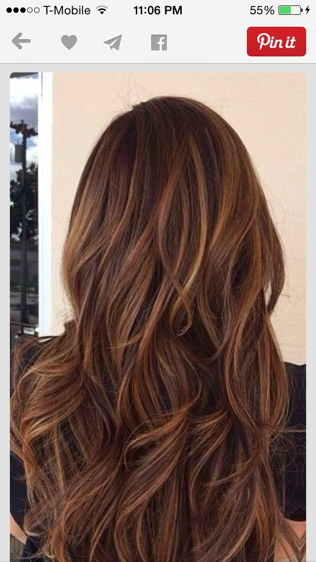 Thinking of doing this to my hair