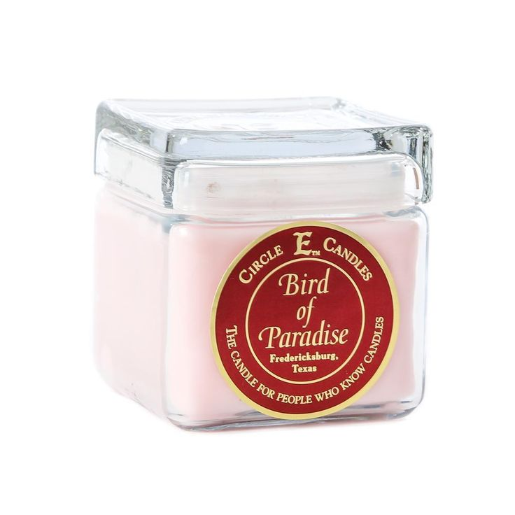 CIRCLE E (BIRD OF PARADISE) BEST CANDLE | BEST GIFTS | REPIN and get a 10% discount code |#bestgiftsunder50 #giftsforher #candles #circlee #candleoftheyear #tylercandles