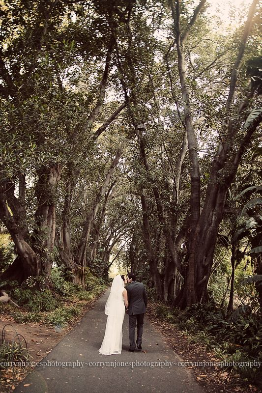 Wedding bride and groom trees botanic gardens garden for Garden trees adelaide