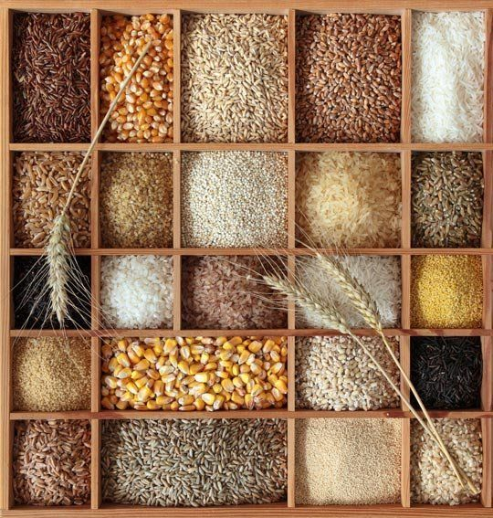 A Guide to Cooking with Whole Grains & Baking with Whole Grain Flours  Quick Guides to Ingredients