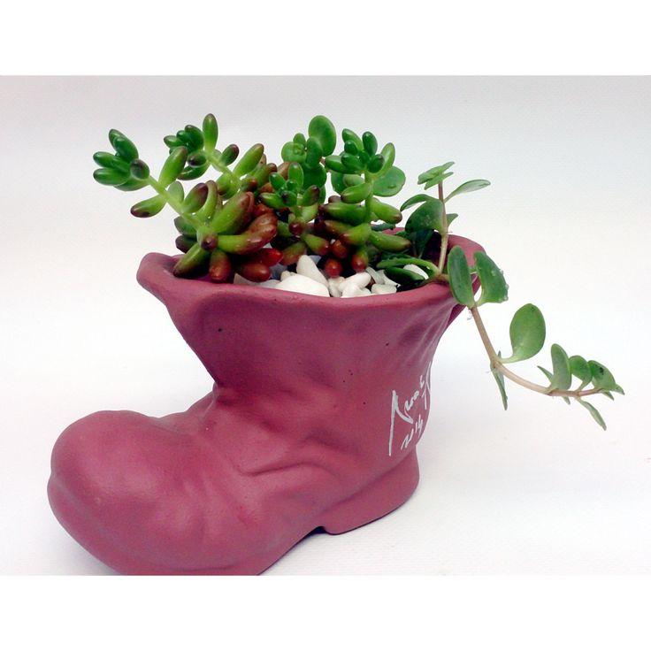 Iti place sa admiri plantele, dar uiti sa le uzi? Un aranjament cu suculente este perfect pentru tine!