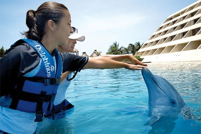 Delphinus Trainer for a Day . Activities in Cancun