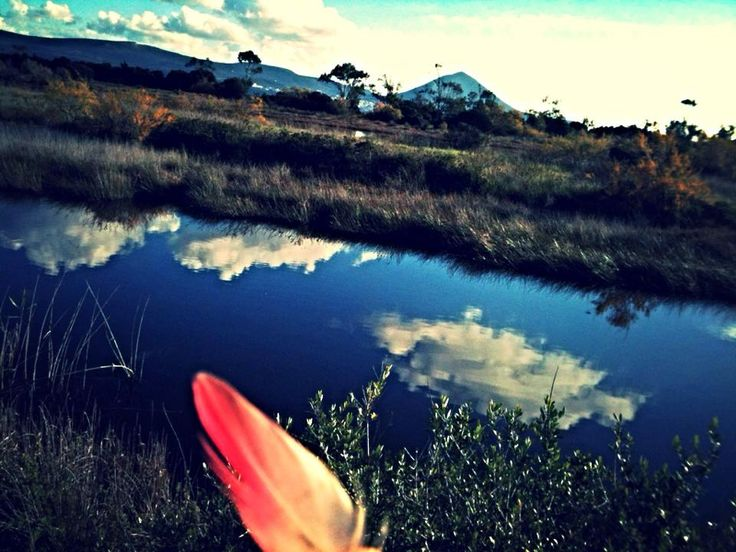 flamingo lagoon gialova