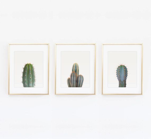 Set of 3 cactus prints  Cactus photography art by kiwiNberries