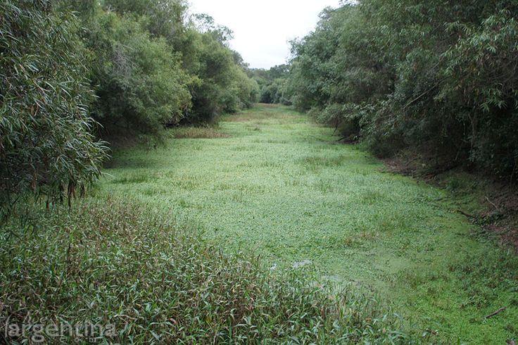 Río en Parque Nacional Chaco