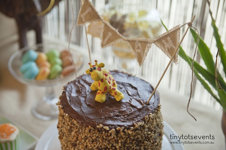 Safari party birthday cake - Tiny Tots Events - Melbourne's Little People Parties specialist
