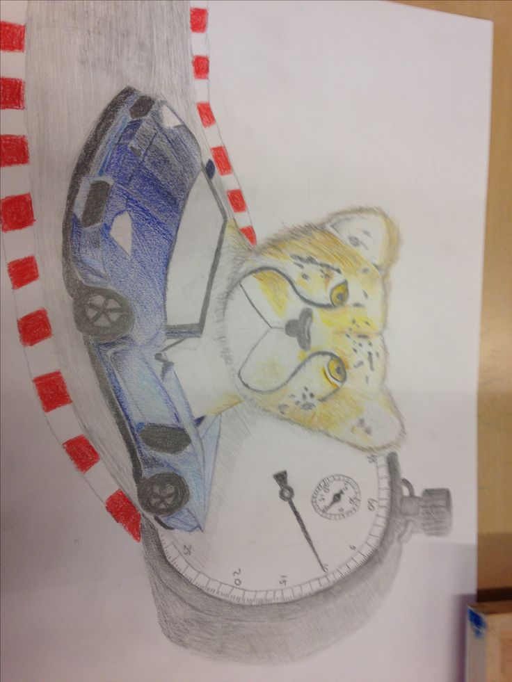 Dit is mijn eindresultaat ik heb veel dingen geleerd zoals schaduw tekenen, met kleuren door elkaar tekenen. En hoe je iets heel glad kan laten lijken dat vond ik ook best moeilijk. In de tekening komt de lichtbron vanaf rechtsboven dat kan je zien aan de schaduwen ik vond het een leuke opdracht en ben trots op mijn werk. Het nieuw beeld dat ik heb gecreëerd laat zien dat het een snel dier is door het in een snelle auto te plaatsen met een timer.