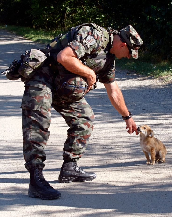A Slovenian soldier petting a puppy