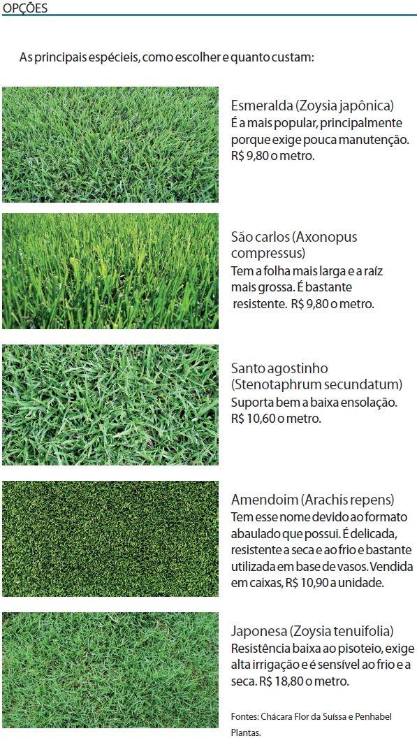 Como escolher o gramado ideal e deixar o seu jardim bonito mesmo com a proximidade do inverno