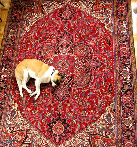 101 Best Images About Persian Carpet On Pinterest