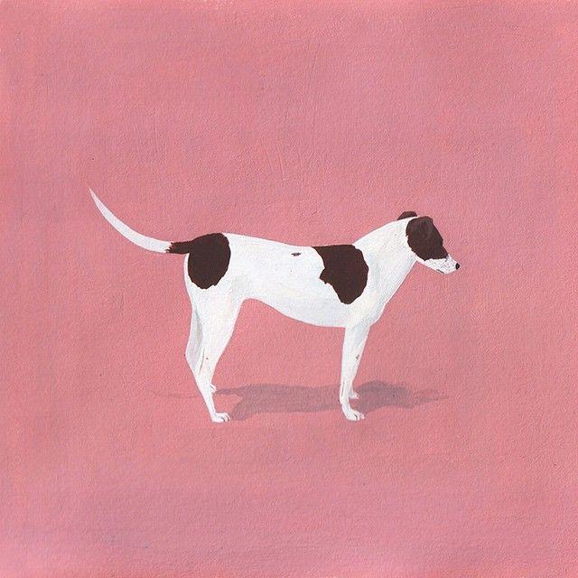 Robert Bowers - Patient dog