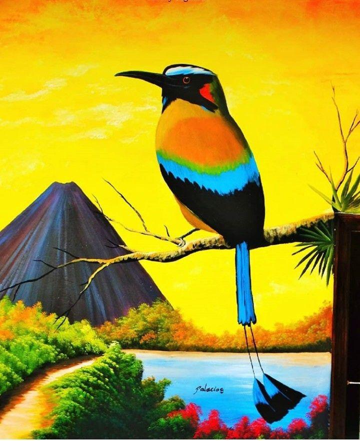 Ave Nacional Del Salvador : nacional, salvador, Torogoz,, Nacional, Salvador., Salvador, South, American, Watercolor, Landscape, Paintings