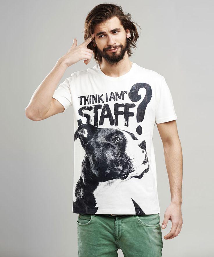 Amstaff men's t-shirt