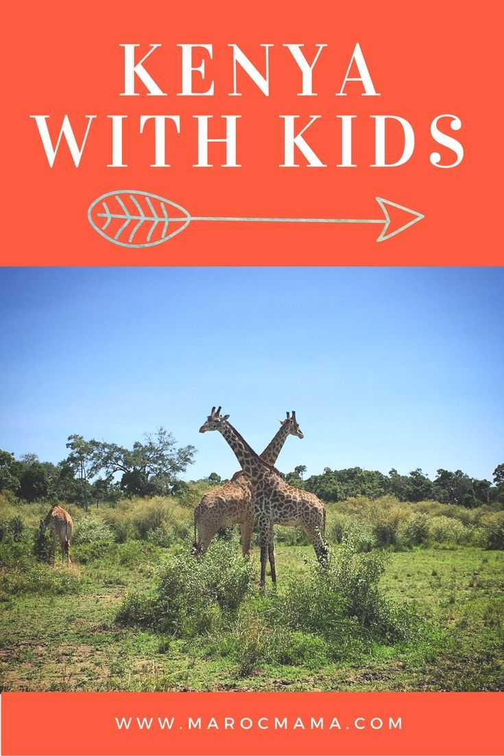 Click to read some of the best advice for taking a safari in Kenya with kids.