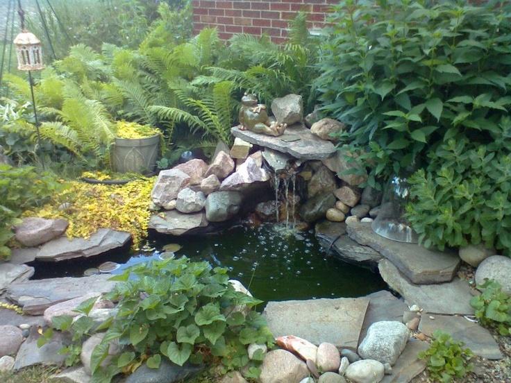 69 best frog unit images on pinterest frogs pond life for Garden pond waders