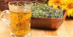 Timo: una potente pianta terapeutica | Rimedio Naturale