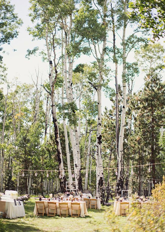 Alixann Loosle Photography Tara Mike Wedding Flagstaff Arizona Olivias In 2018 Pinterest And Venues
