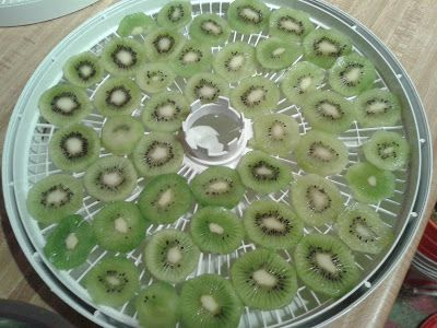How To Dehydrate Kiwi Fruit Recipe    http://www.theymightbehomesteading.com/2013/03/dehydrating-kiwi-fruit.html
