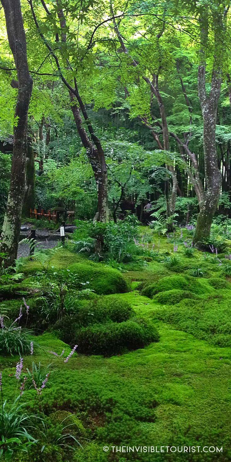 Gio-ji Temple & Moss Gardens, Kyoto, Japan // The Invisible Tourist