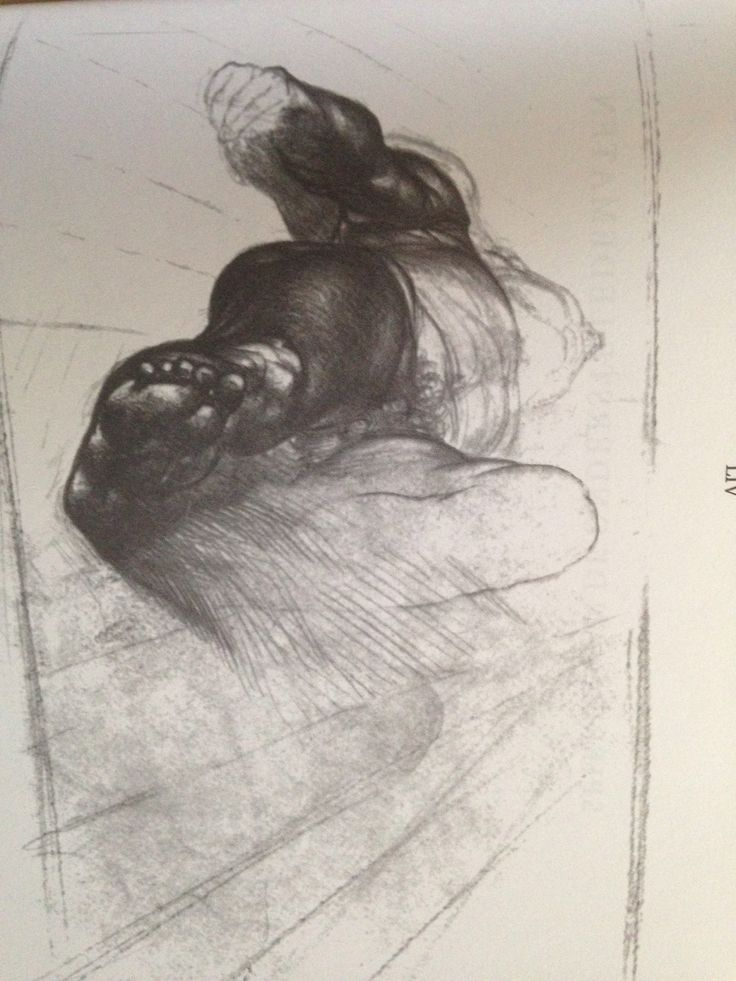 Anatomy | jenö barcsay