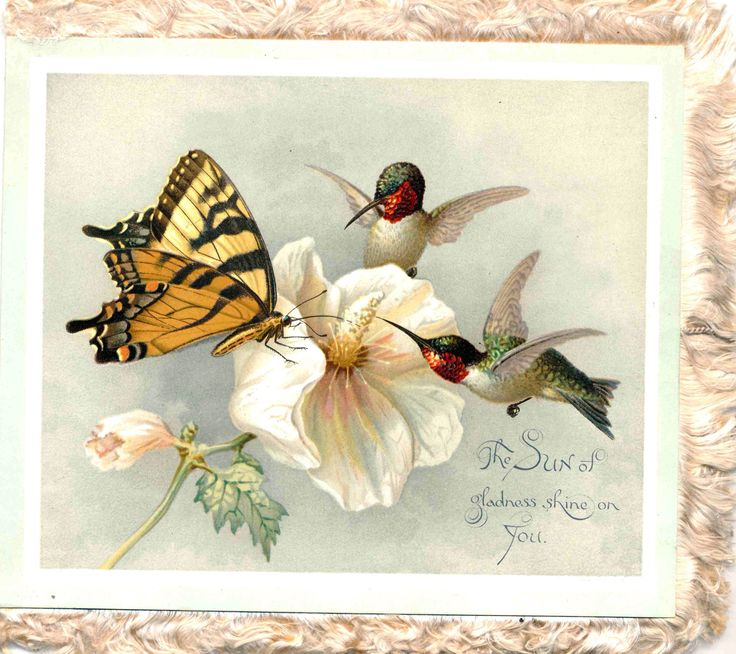 11 best louis prang antique american greeting cards images on prang christmas card m4hsunfo
