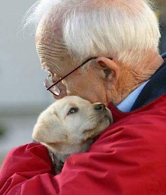 Boldog Blogok: Állatokkal a magány ellen