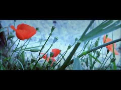 '' Έχω μια σκέψη...'' Ψαραντώνης - Νίκος Στρατάκης - Γιώργος Νικηφόρου Ζερβάκης - YouTube