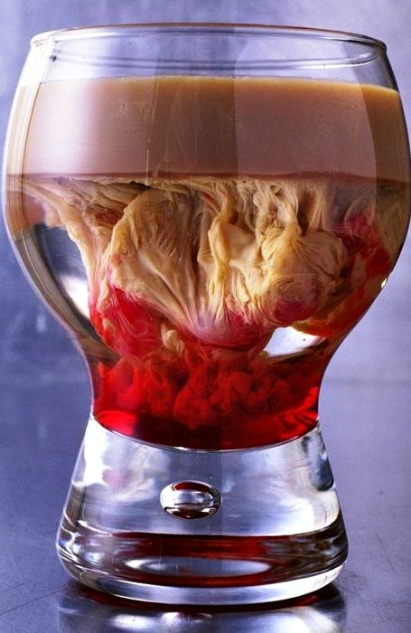 Bloody Brain Shooter Recipe ~ Throwing a Party This Halloween?  Impress (or gross out) your guests with this gruesome drink