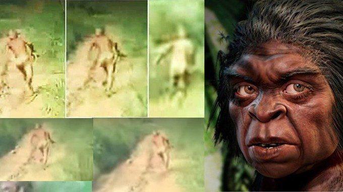 Siapa suku mante?