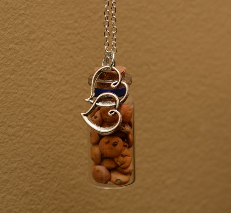 Chocolate Chip Cookie Jar Bottle Necklace by FootprintsOnVenus on Etsy