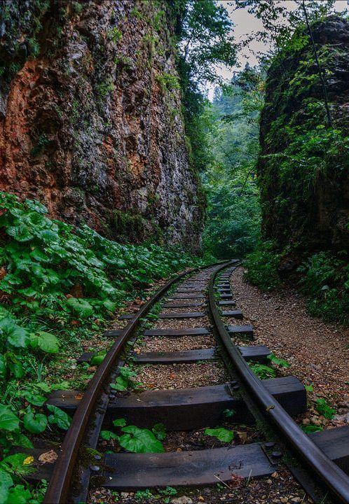 Гуамское ущелье, Краснодарский край, Россия.    Оригинальный каньон, длина которого больше чем 3 км - это Гуамское ущелье, которое образовано свисающими 400 метровыми утесами.