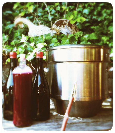 This recipe for homemade, low-sugar grape juice includes step-by-step instructions for the versatile Mehu-Liisa steam juicer.