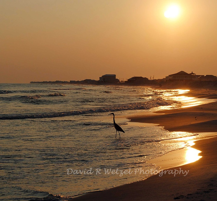 Dauphin Island Sunset-possible vacation spot for next summer-EXCITED!!
