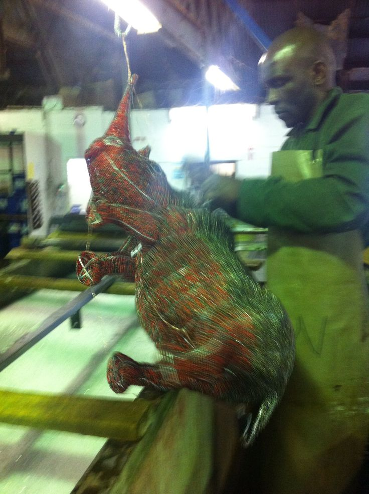 Adult Locked Horn Rhino going in to tank for nickel plating,