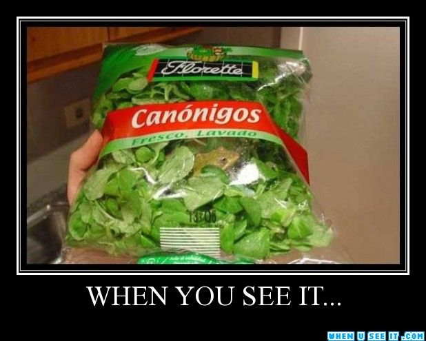 "16 Hilarious ""When You See It"" Pics - When You See It ..."