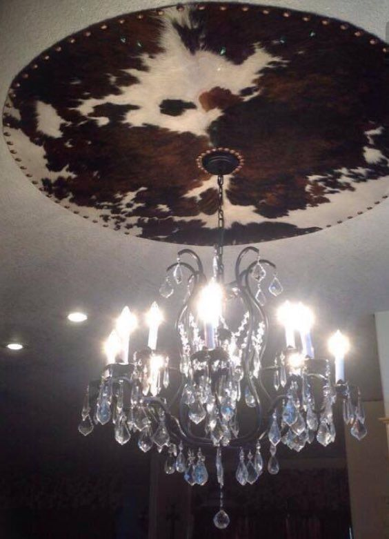 Different chandelier but like the idea