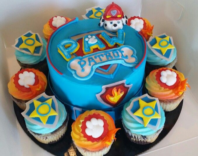 Best 25 Paw patrol cupcakes ideas on Pinterest  Paw