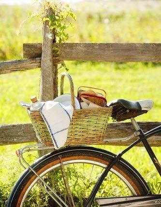 Picnic en bici